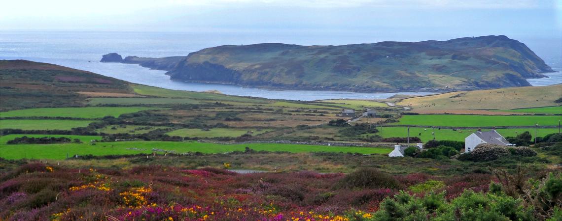 Manx Tour Guide - Fiona McArdle
